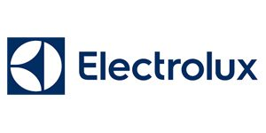 Sunninghill and Ascot Electrolux Repairs